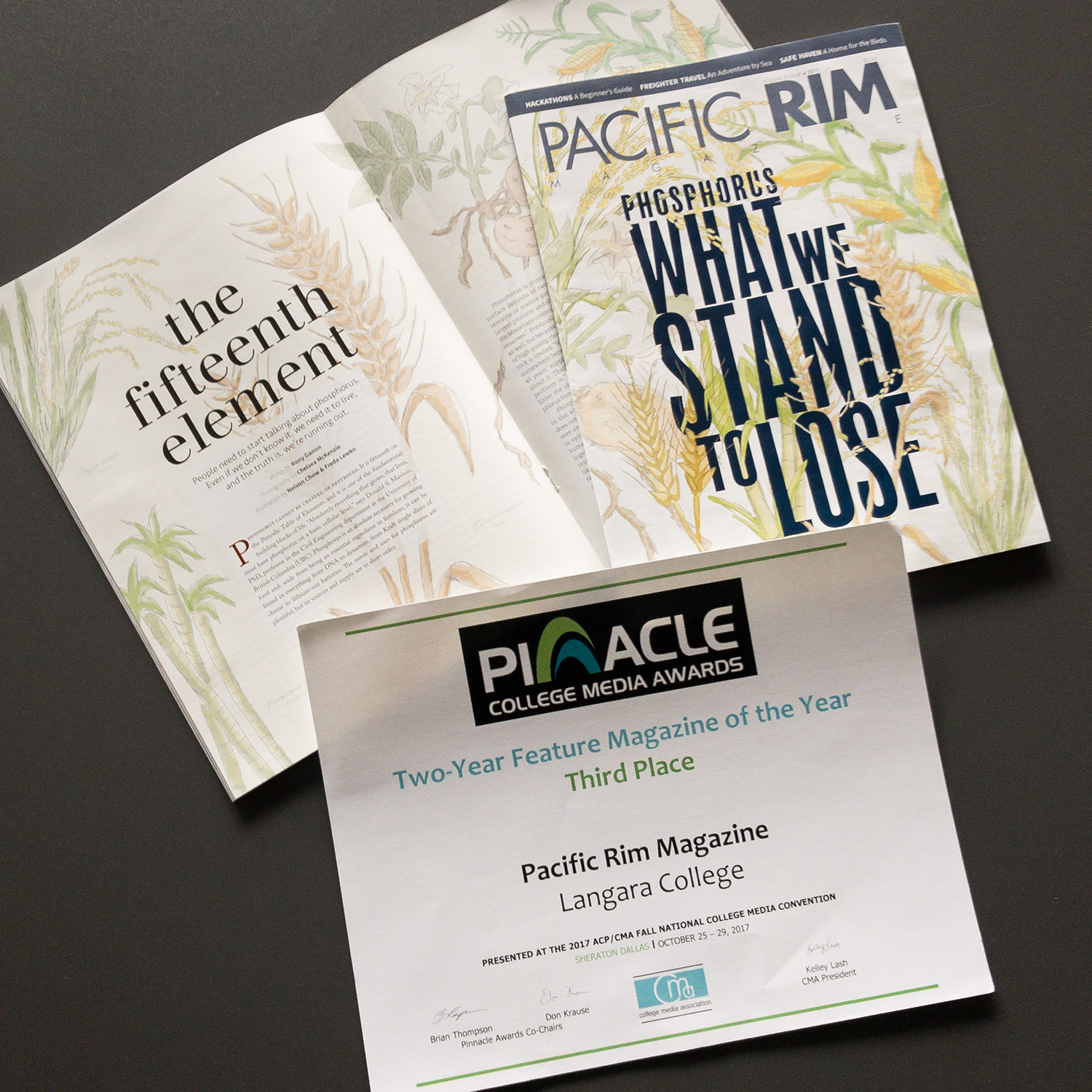 Pinnacle Award Best Magazine